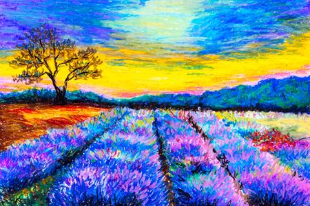 a lavender field art print